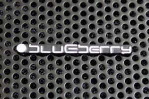 Blueberry BC-G51-560