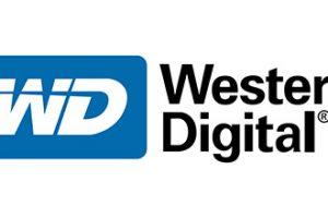WD PCI-E HDD